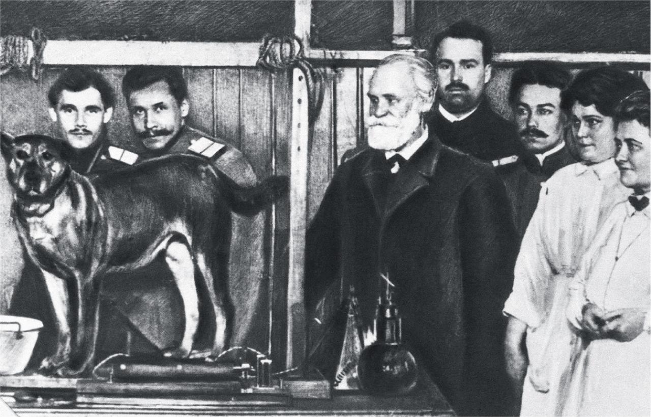 چه کنیم که به سگ پاولوف تبدیل نشویم؟